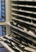 [icon] - sys-case-study-museum-springfield-armory-national-historic-site